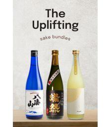 The Uplifting Bundle